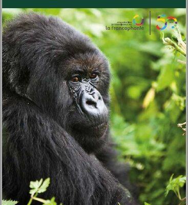 Sur la piste des grands singes, exposition du 12 au 30 avril